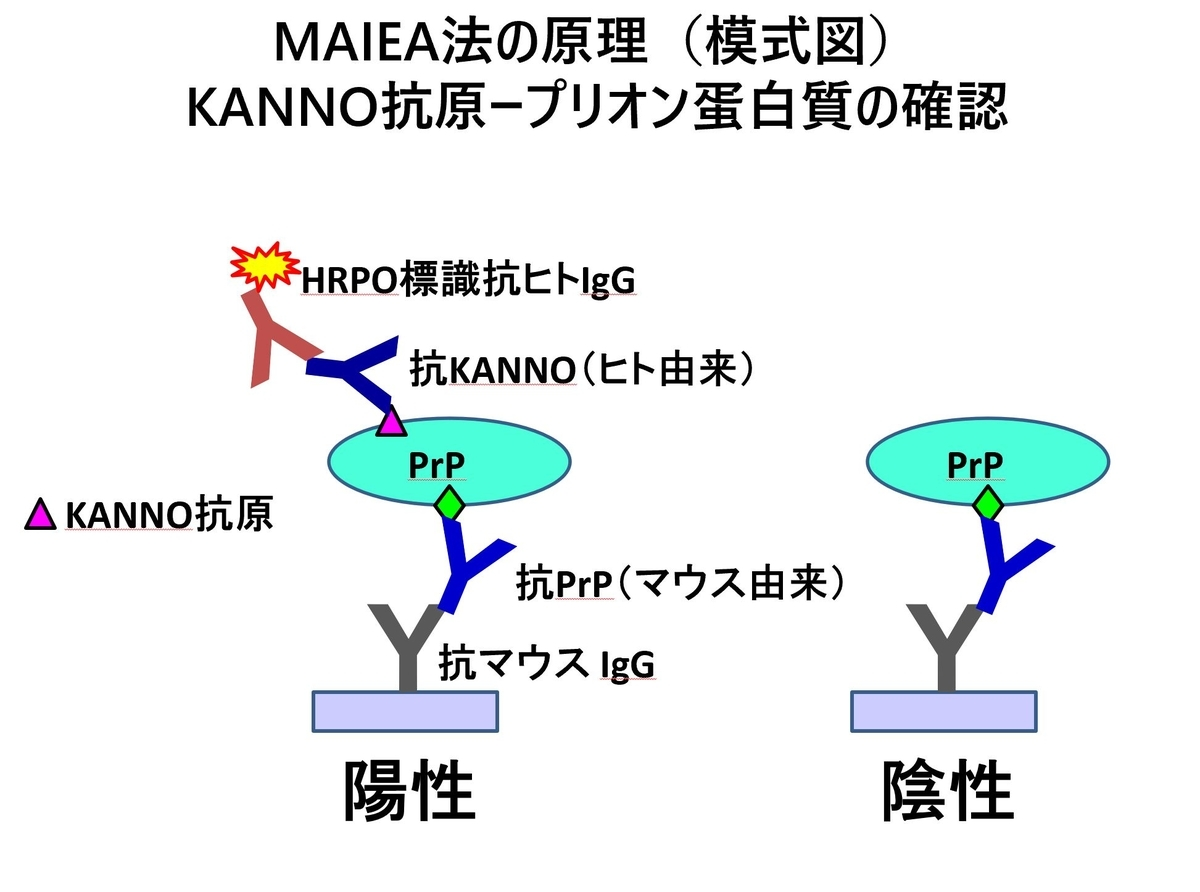 f:id:bloodgroup-tech:20200423200424j:plain