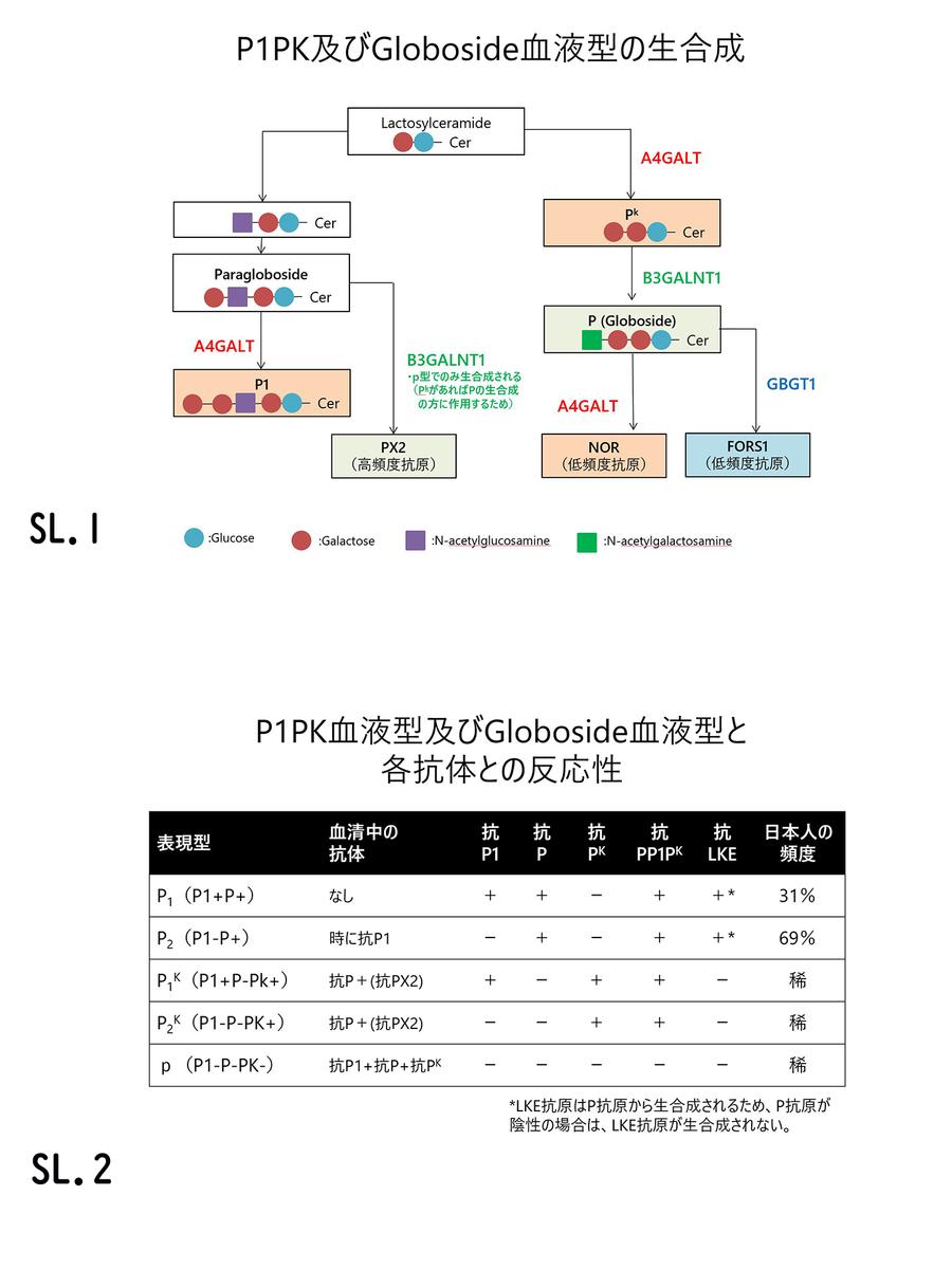 f:id:bloodgroup-tech:20200508203110j:plain
