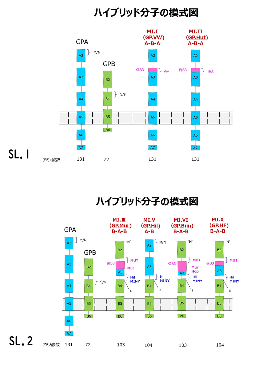 f:id:bloodgroup-tech:20200531213911j:plain