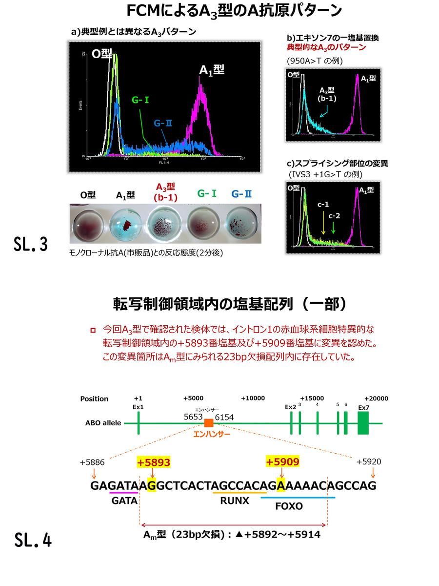 f:id:bloodgroup-tech:20200613091740j:plain