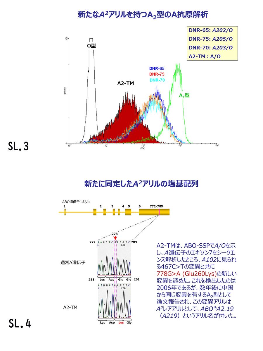 f:id:bloodgroup-tech:20200630080329j:plain