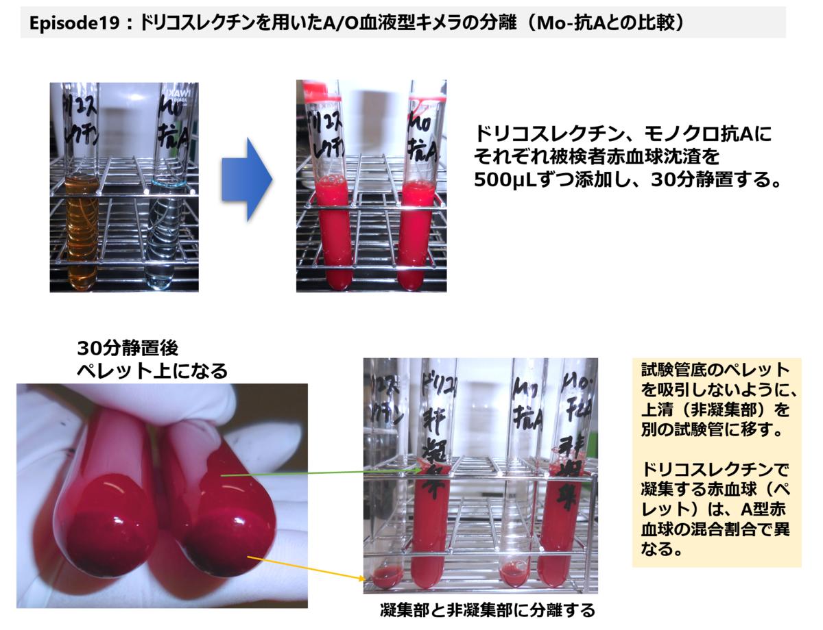 f:id:bloodgroup-tech:20210227130235p:plain