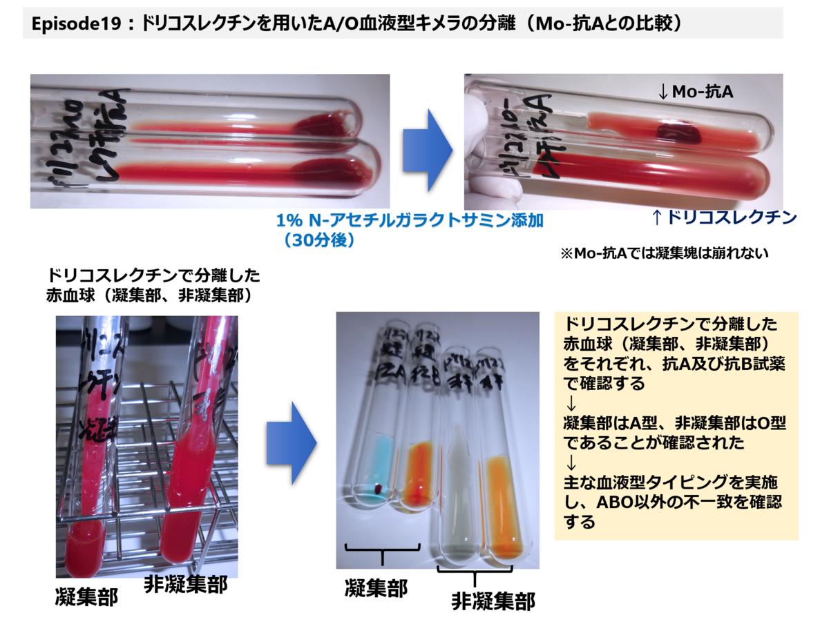 f:id:bloodgroup-tech:20210227130252p:plain