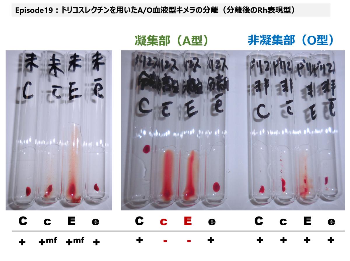 f:id:bloodgroup-tech:20210227130347p:plain