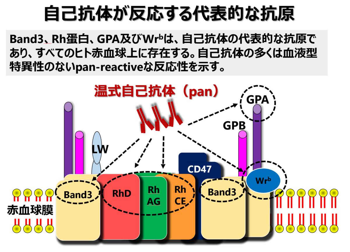 f:id:bloodgroup-tech:20210315183923p:plain