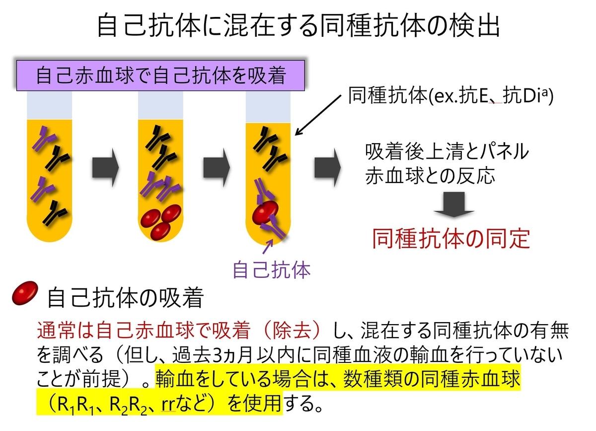 f:id:bloodgroup-tech:20210321210939j:plain