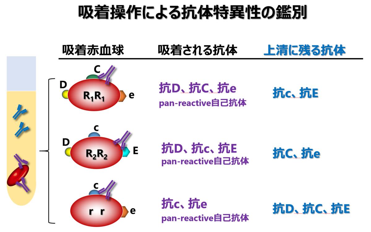 f:id:bloodgroup-tech:20210607093651p:plain