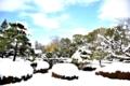 京都新聞写真コンテスト 必見雪の二条庭園
