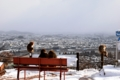 京都新聞写真コンテスト リア充!?さるでも見る古都の雪景色