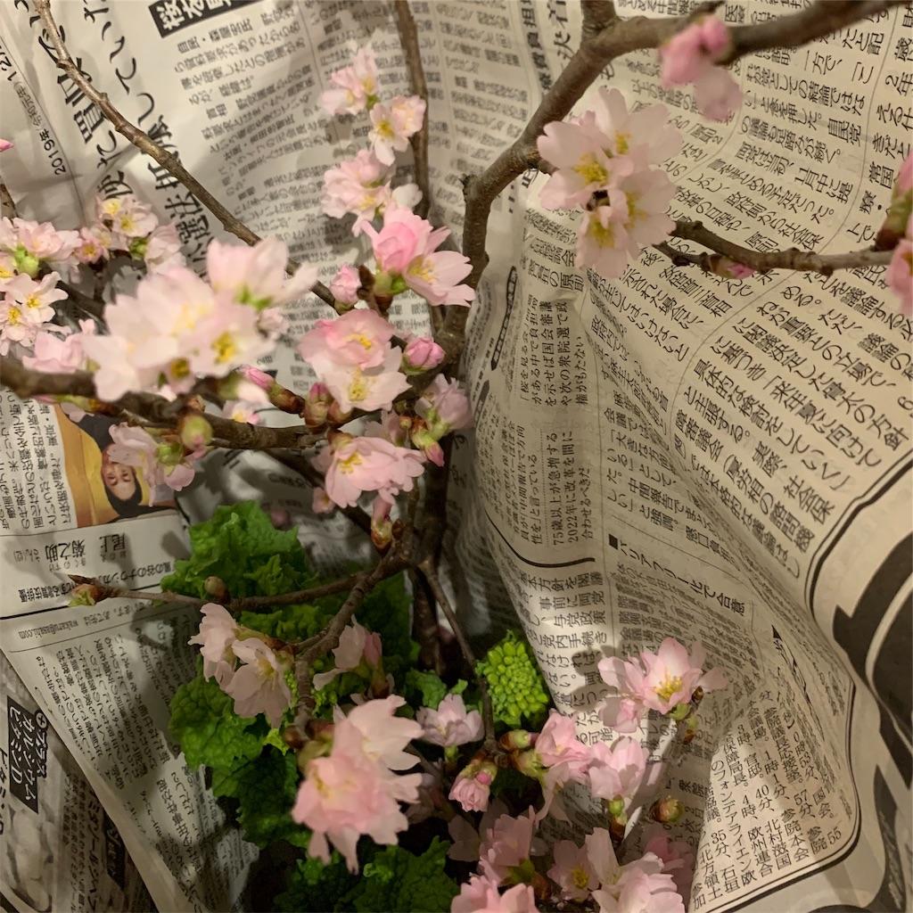 f:id:blossom-art:20200123233822j:image