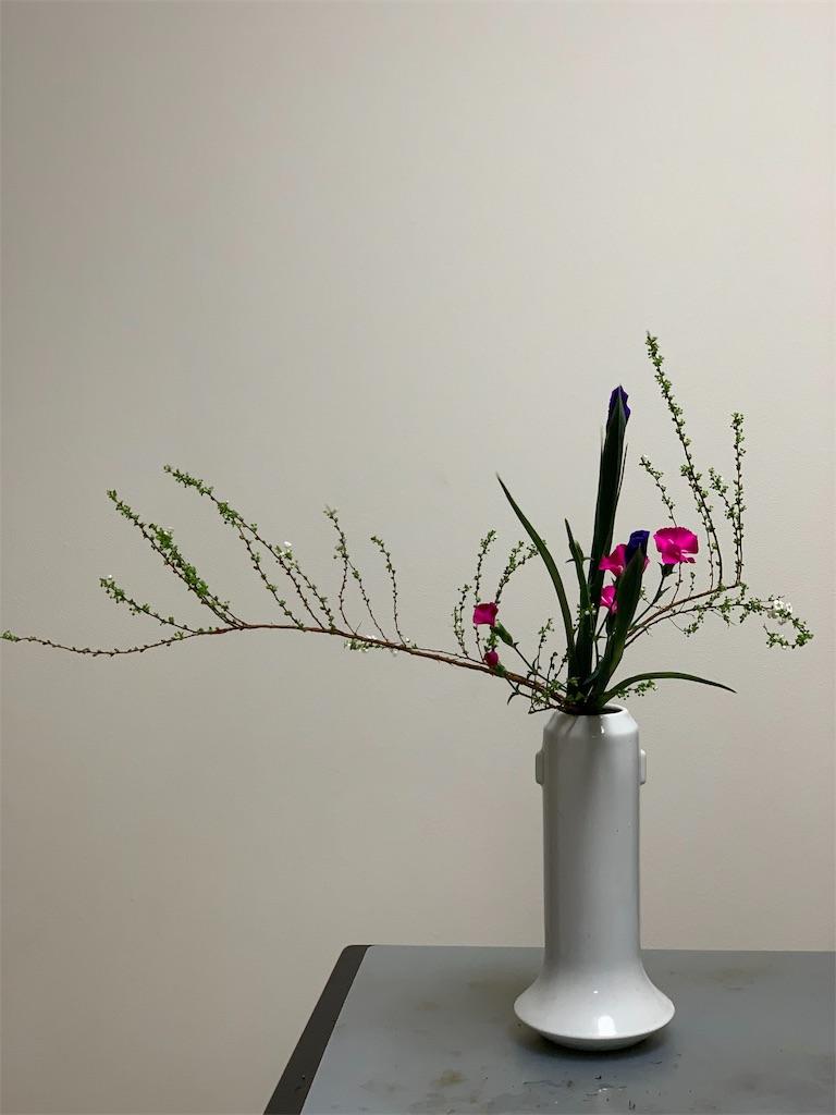 f:id:blossom-art:20200123234254j:image