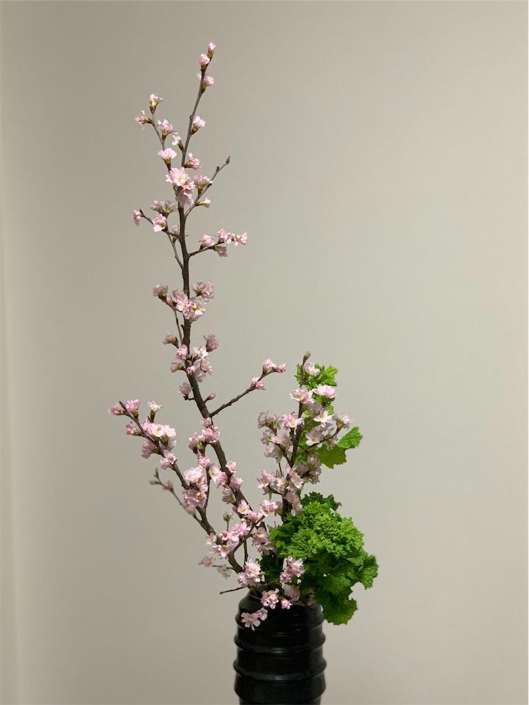 f:id:blossom-art:20200123234527j:image