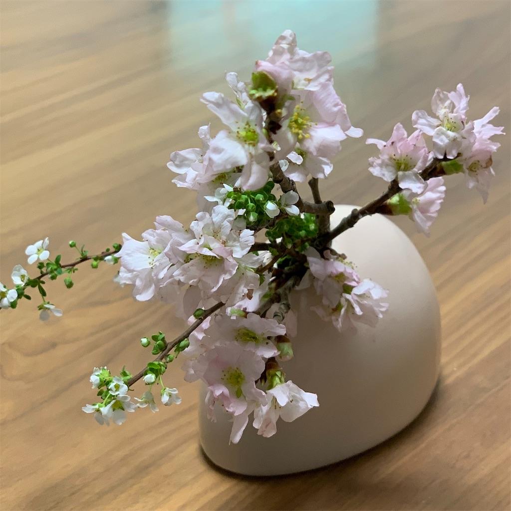 f:id:blossom-art:20200123234755j:image