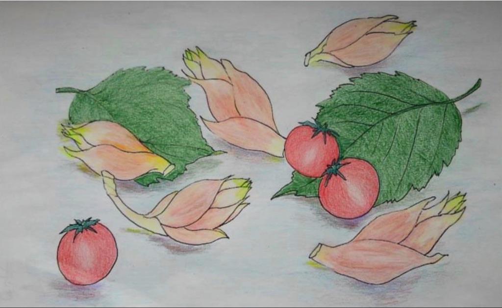 f:id:blossom-art:20200722193638j:image