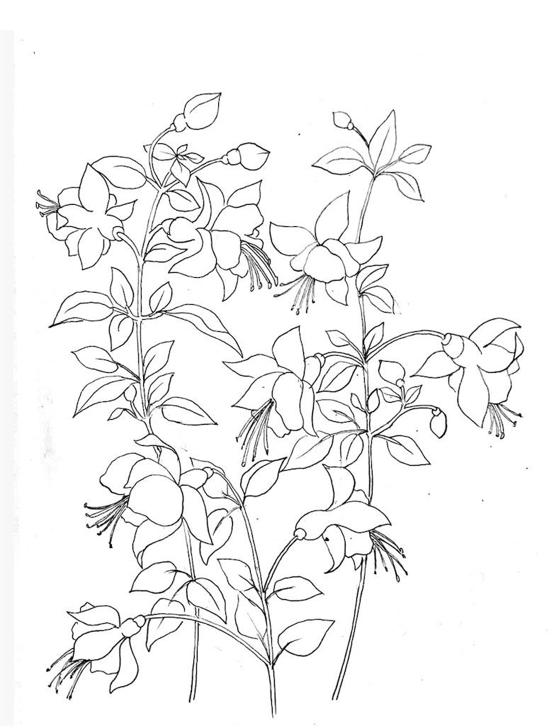 f:id:blossom-art:20200722194759j:image