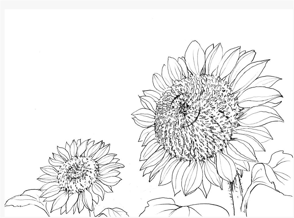f:id:blossom-art:20200810213318j:image
