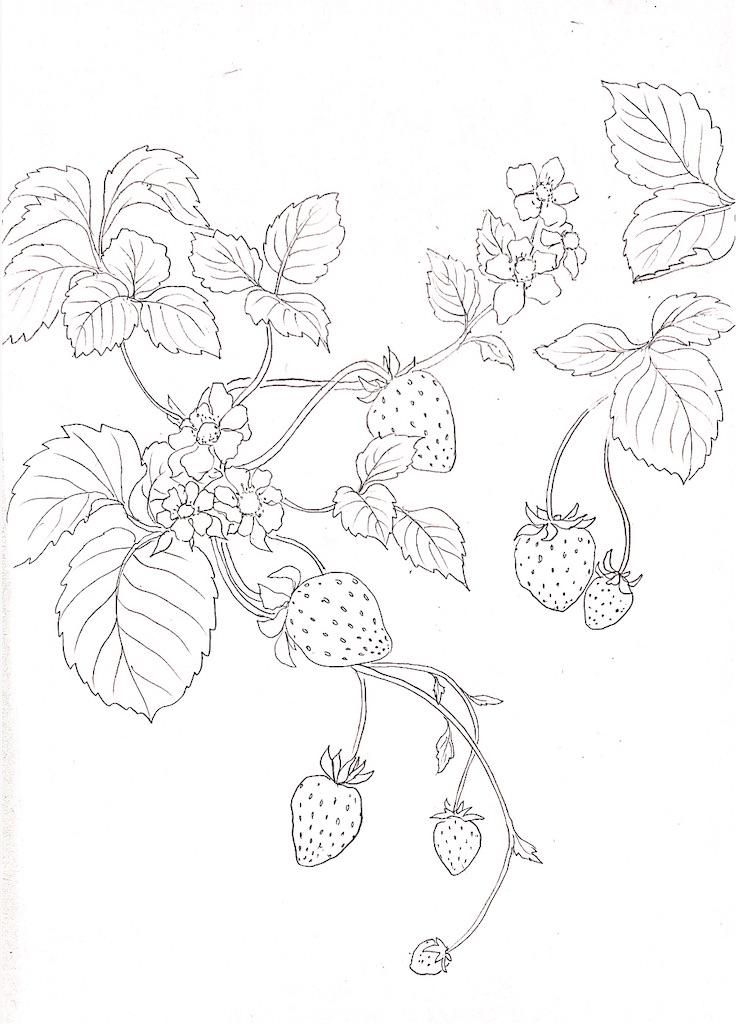 f:id:blossom-art:20210223204546j:image