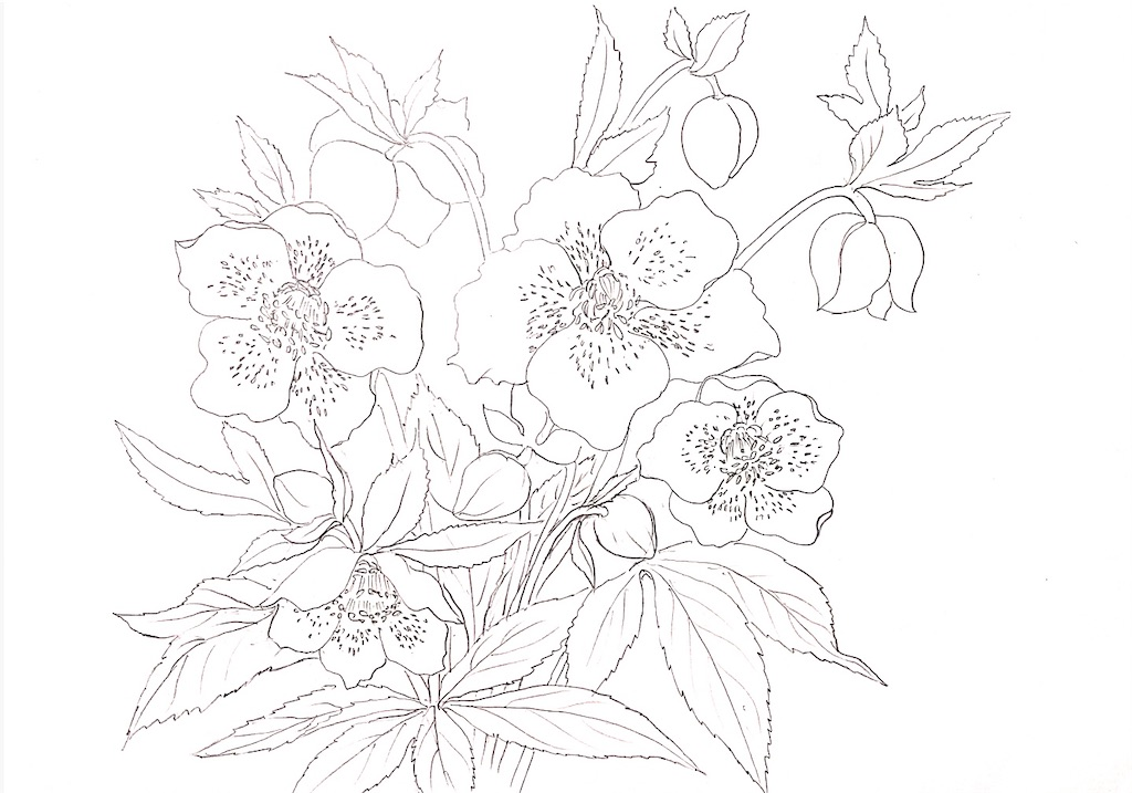 f:id:blossom-art:20210225204319j:image