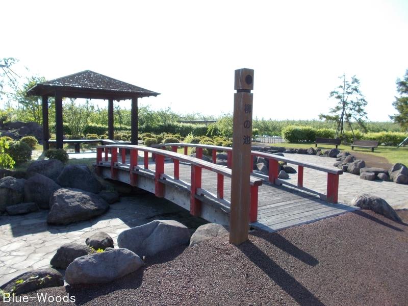 20180521 唐糸御前史跡公園 柳の池(藤崎町藤崎)