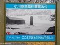 20181127 小川原湖(東北町上野)