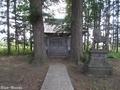 20190613 八幡宮のイチョウ(鶴田町境)