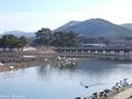 20200127 浅所海岸(平内町福館)