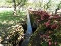 20200615 猿賀公園(平川市猿賀)