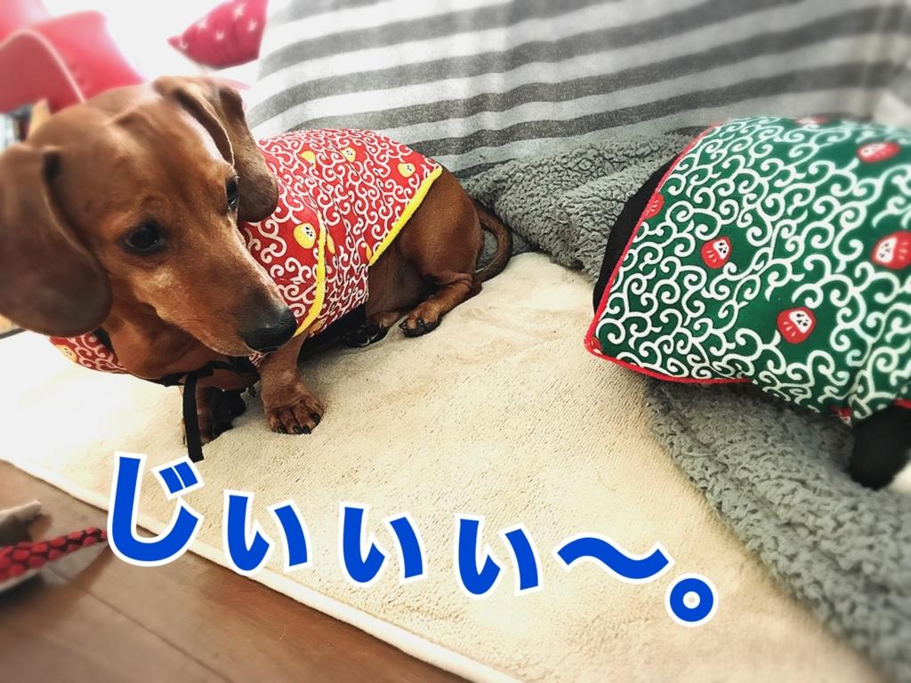 f:id:bluebluerbluest-tanikawa7:20170129172514j:plain