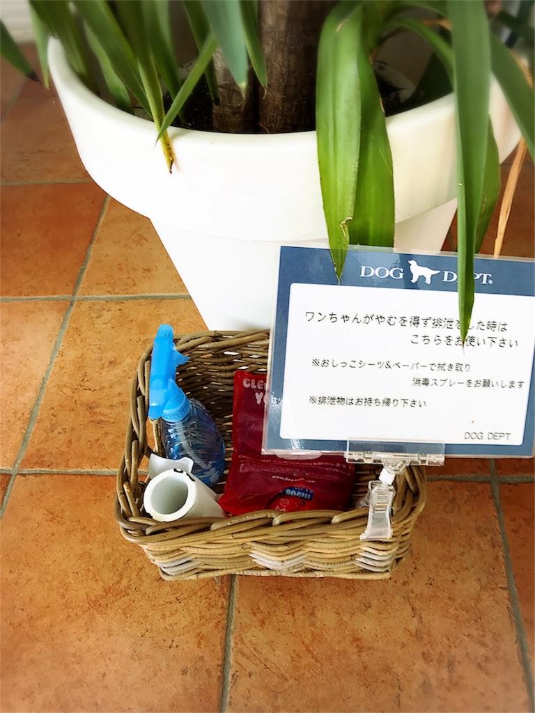 f:id:bluebluerbluest-tanikawa7:20170209102310j:image