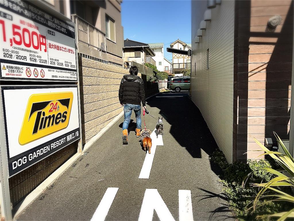 f:id:bluebluerbluest-tanikawa7:20170209104144j:image
