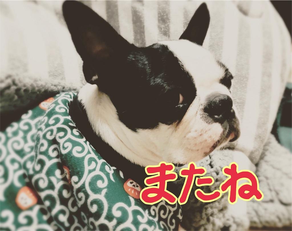 f:id:bluebluerbluest-tanikawa7:20170213090507j:image