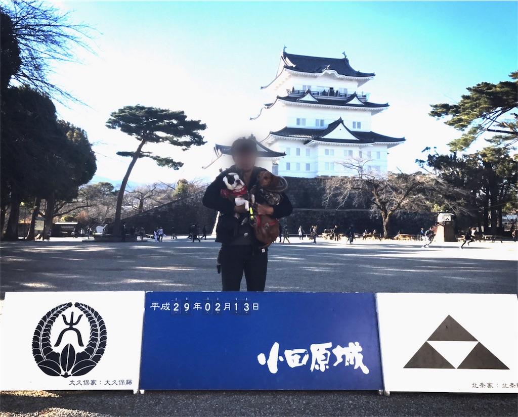 f:id:bluebluerbluest-tanikawa7:20170214104548j:image