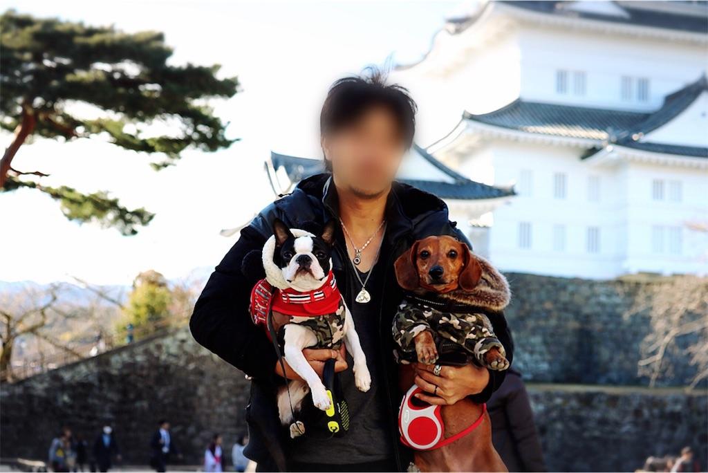 f:id:bluebluerbluest-tanikawa7:20170214105057j:image