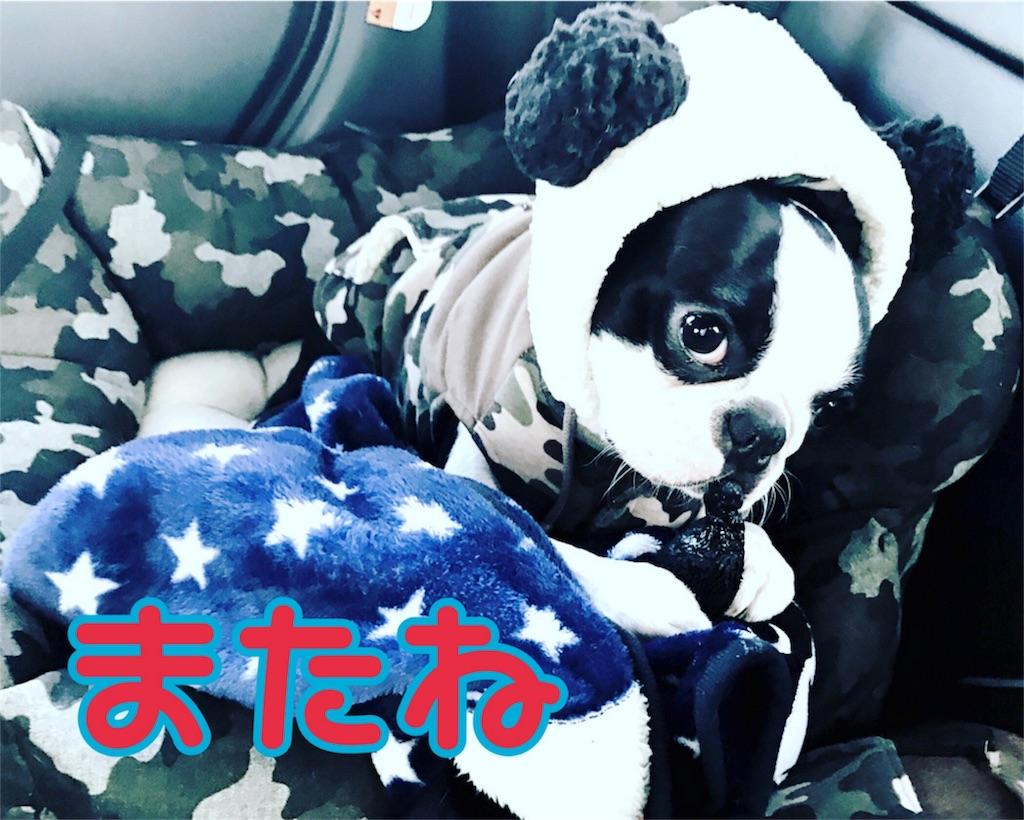 f:id:bluebluerbluest-tanikawa7:20170214111817j:image