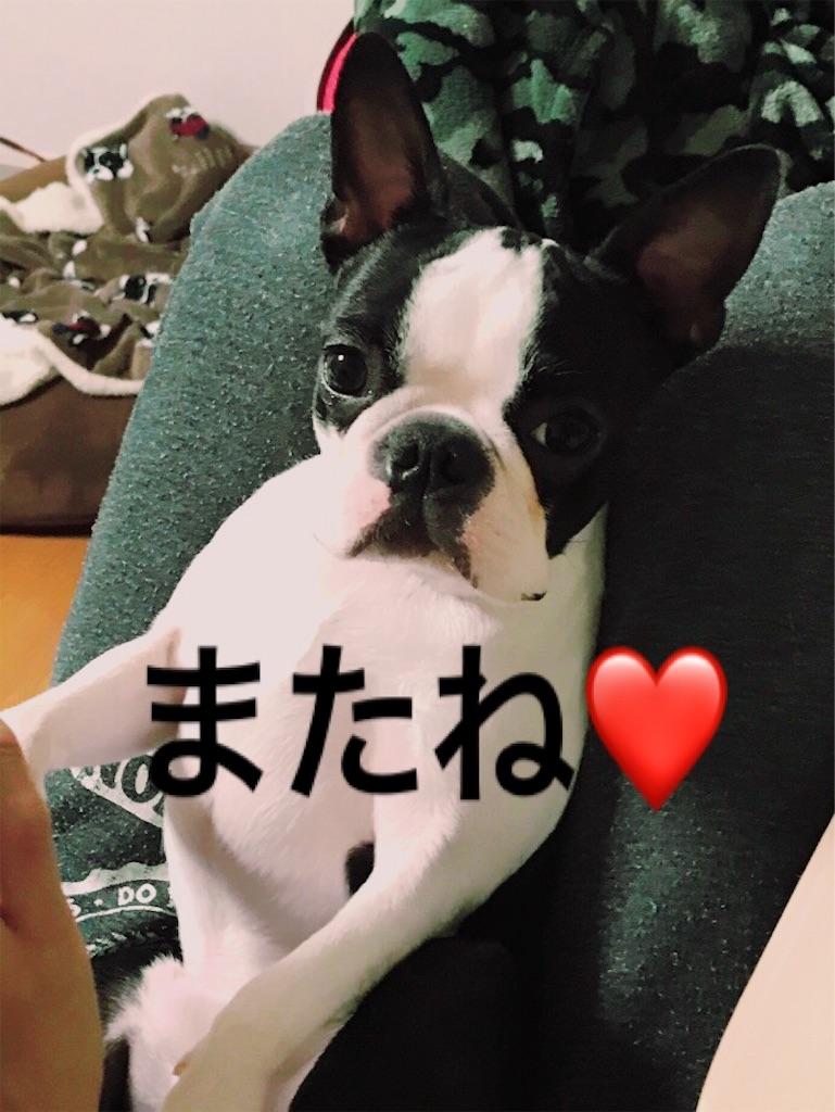 f:id:bluebluerbluest-tanikawa7:20170308103435j:image