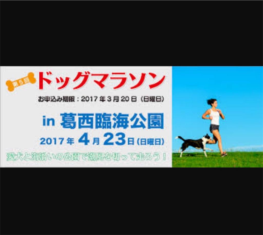 f:id:bluebluerbluest-tanikawa7:20170316100701j:image