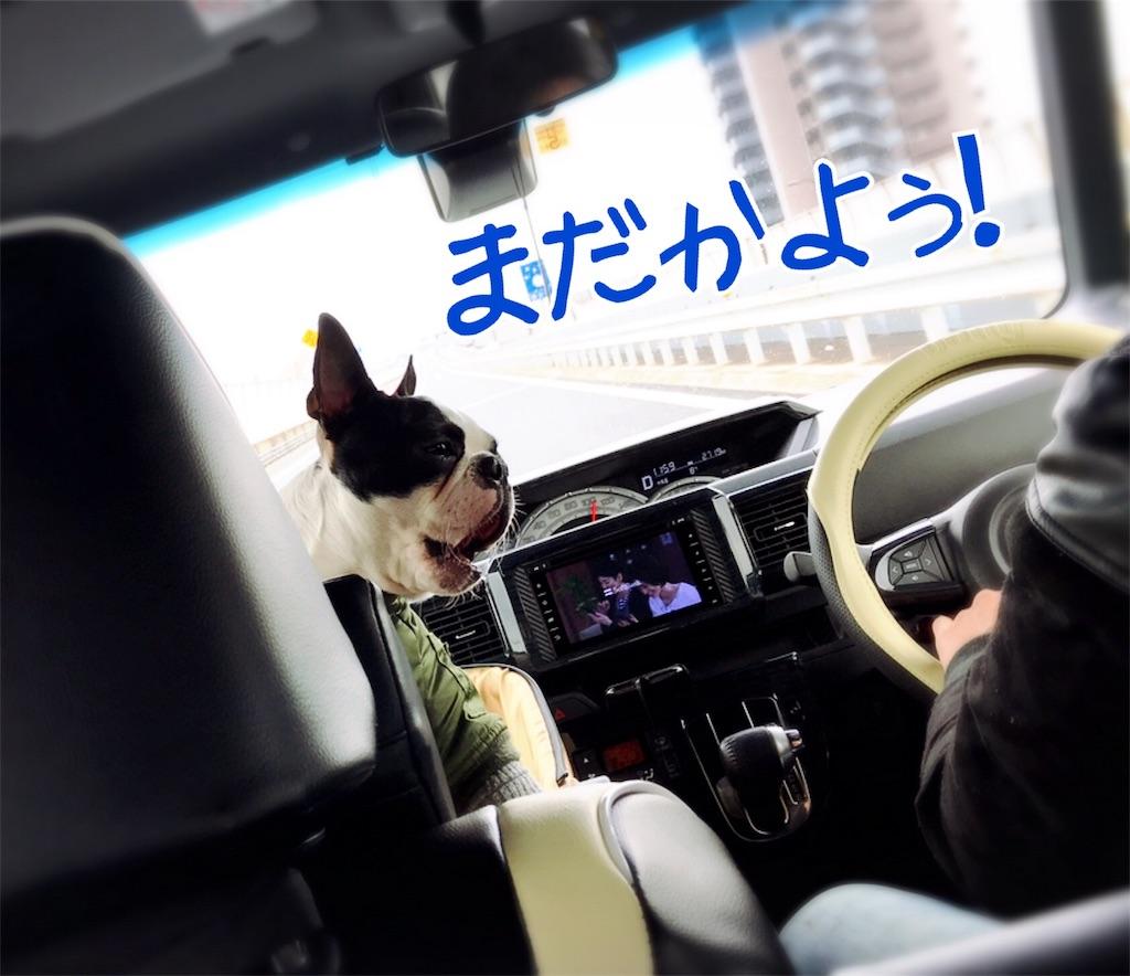 f:id:bluebluerbluest-tanikawa7:20170402185456j:image
