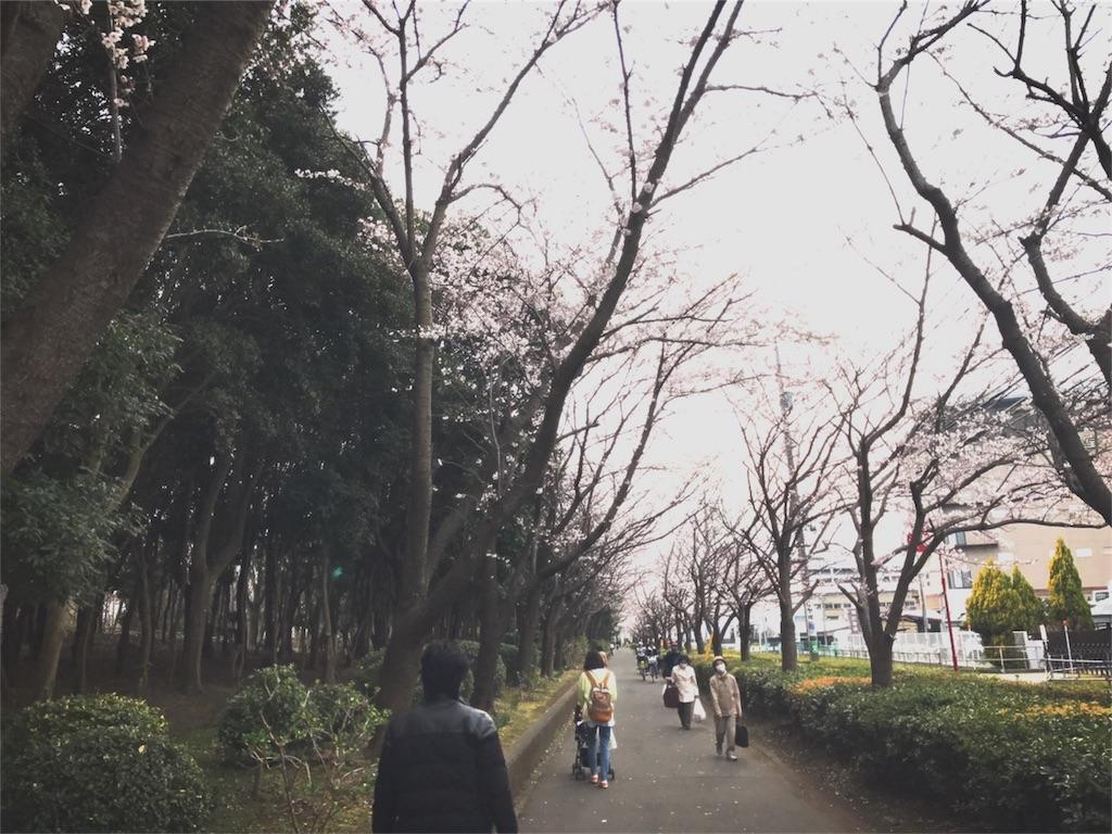 f:id:bluebluerbluest-tanikawa7:20170405183332j:image