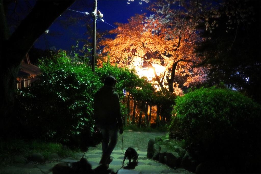 f:id:bluebluerbluest-tanikawa7:20170413223657j:image