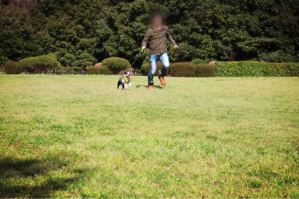 f:id:bluebluerbluest-tanikawa7:20170414102353p:image