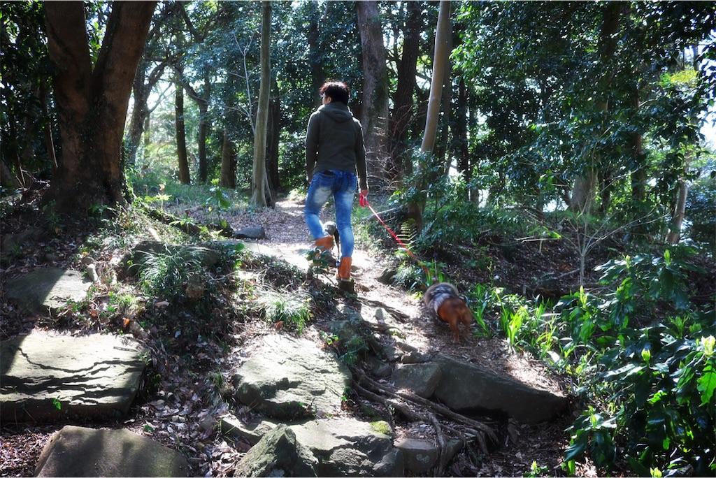 f:id:bluebluerbluest-tanikawa7:20170414102425j:image