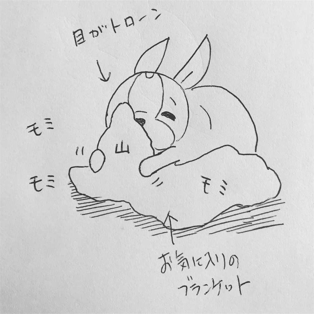 f:id:bluebluerbluest-tanikawa7:20170908102215j:image