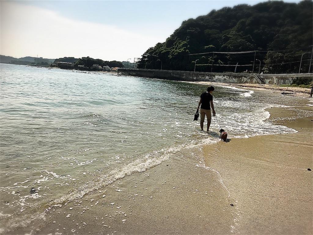 f:id:bluebluerbluest-tanikawa7:20170916084438j:image