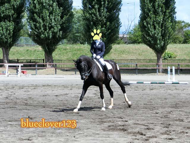 無料!馬が斜めに歩く技術旭川乗馬倶楽部のホースショー_ブログ子育てママの日々役に立ちそうなちょっとしたこと_blueclover123