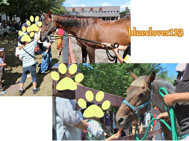 無料!馬にふれあえる旭川乗馬倶楽部のホースショー_ブログ子育てママの日々役に立ちそうなちょっとしたこと_blueclover123