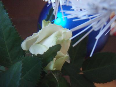 f:id:bluemoonbell:20061224090220j:image