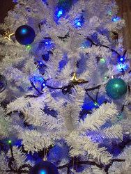 f:id:bluemoonbell:20071220202700j:image