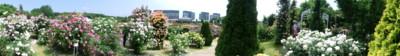 f:id:bluemoonbell:20120528095445j:image