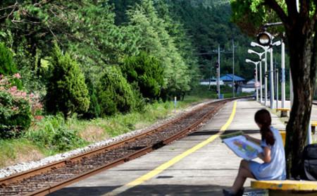 f:id:bluetears_osaka:20101030131945j:image