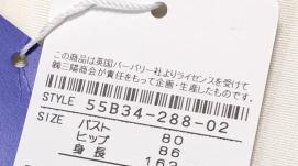f:id:bo-yang:20210123000300p:plain